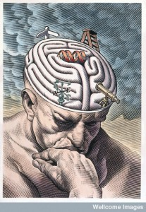 The gyri of the thinker's brain as a maze of choices