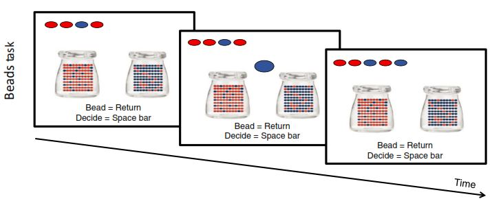 The beads task used in the study