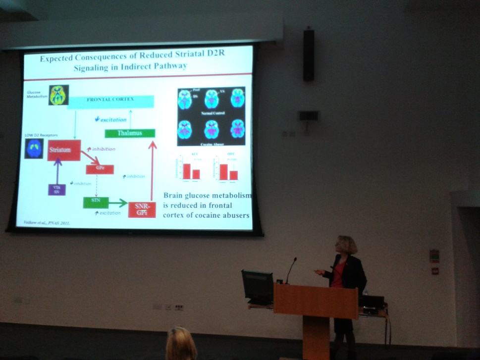 Dr Volkow delivering the Paykel lecture