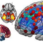 Cambridge Satellite event for Brainhack Global